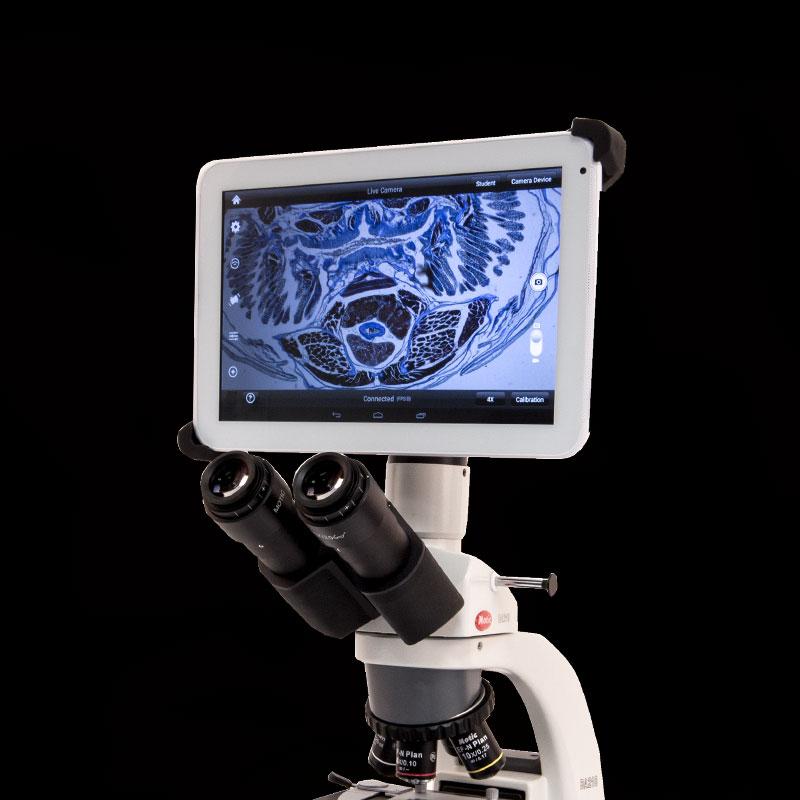 Outlet - Diagnostic Imaging