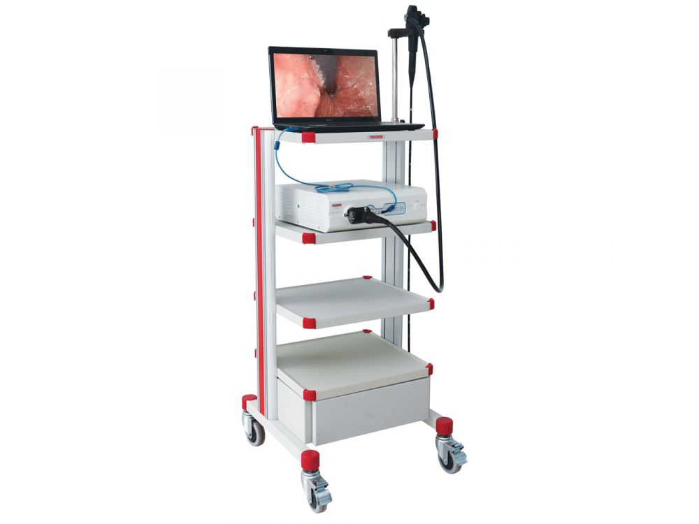 Huger Endoscopy Cart