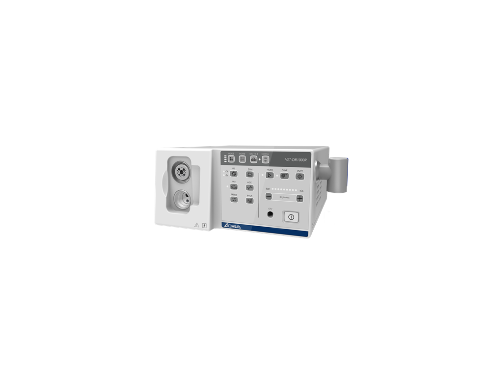 Burtons OR1000R LED Processor -Clearance