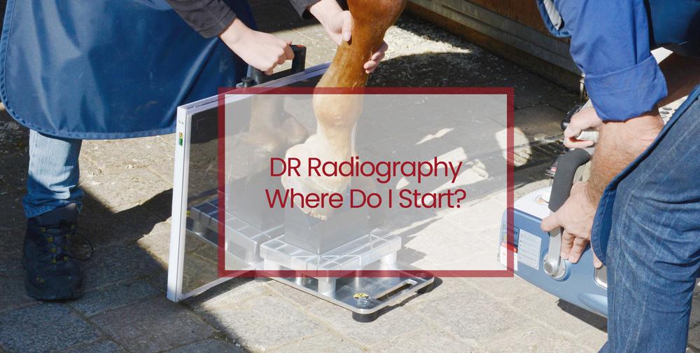 DR Radiography - Where Do I Start?