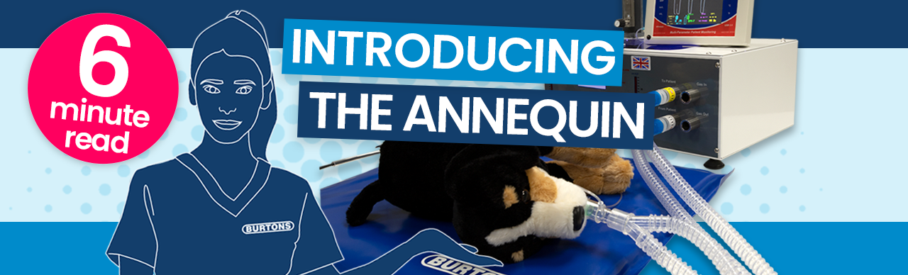 The Annequin – Realistic, in-practice capnography & ventilation training
